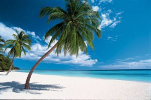 Сезон в Доминикане