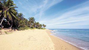 Погода в Доминикане в январе